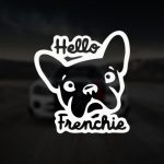 Hello Frenchie Bulldog